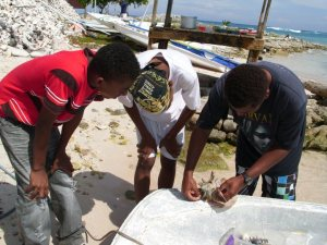 The new graduates of STINAPA's Junior Ranger program learning the skills of tagging Queen Conch from Gevy Soliana