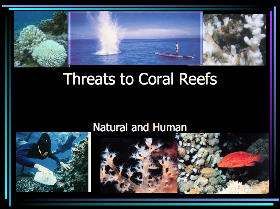 Screen Shot Threats-to-Coral-Reefs-Presentation 2012-10-08 at 1.29.45 PM