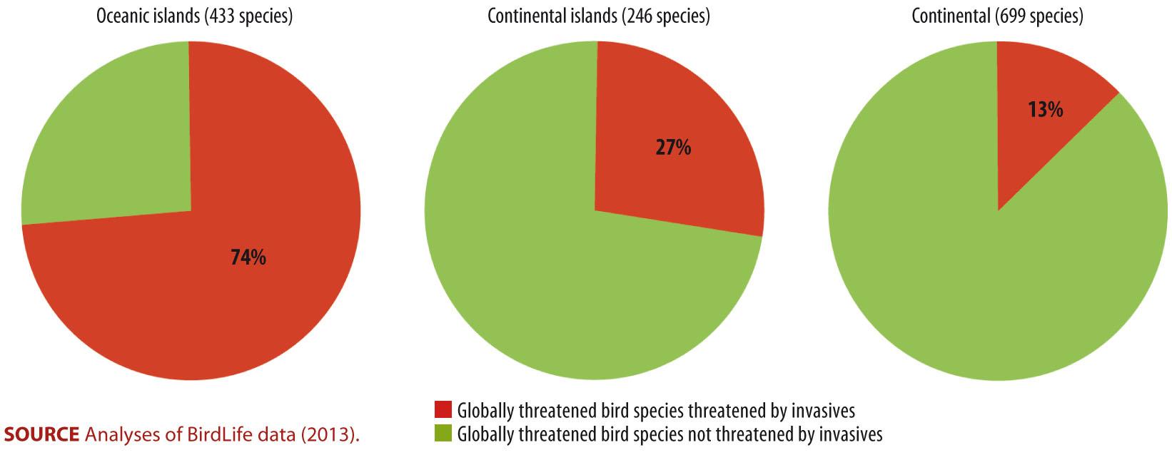 Island Birds at Threat