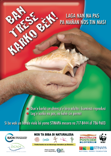 Conch Restoration Project Poster