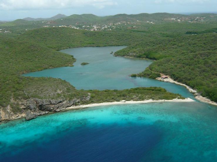 Curacao wetland